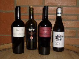 Ochutnávka bulharských vín
