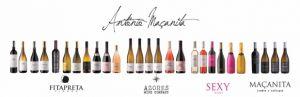 Degustace portugalských vín
